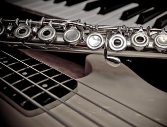 Magasins d'instruments de musique et de sonorisation